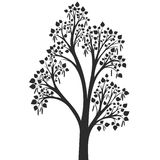 Silhouette of birch tree with leaves Royalty Free Stock Image