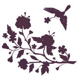 Silhouette of bird and flowers on blossom branch Stock Photo