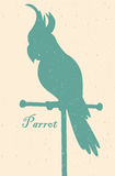 Silhouette of the bird. A parrot on a perch Stock Photo