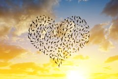 Silhouette of birds flying in heart formation. Royalty Free Stock Photo