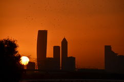 Silhouette of birds over Dubai skyline at sunset. Birds flying over the Dubai skyline at sunset Stock Photo