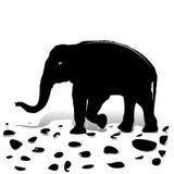 Silhouette of black elephant walking on stones, for design on white background, vector illustration