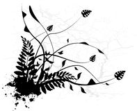Silhouette black floral Stock Images