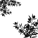 Silhouette of black olive branch Stock Photography