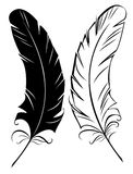 Silhouette black and white feather. Stylized silhouette two feathers black and white on white background Stock Images
