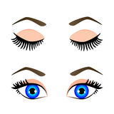 Silhouette of blue eyes and eyebrow. Open and closed, vector illustration Stock Photos