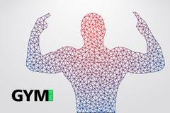 Silhouette of a bodybuilder. gym logo vector. Vector illustration Stock Photo