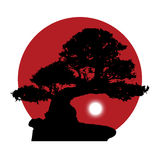 Silhouette of a bonsai on a red sun background. Black silhouette of a bonsai with a rising white moon on a red sun background Stock Illustration