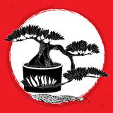 Silhouette of Bonsai tree in the round pot. Traditional Japanese symbol Stock Photo