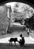 Silhouette of dog and young woman playing in the garden in autum. Silhouette of border collie and young woman bent playing  and holding the dog`s paw in the Royalty Free Stock Photo