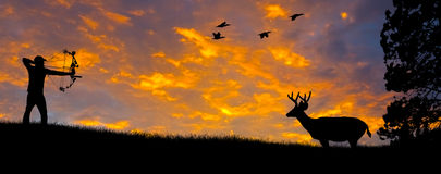 Bow Hunting Silhouette. Silhouette of a bow hunter aiming at a White tail buck against an evening sunset Stock Photos