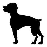 Silhouette of boxer dog Stock Photos