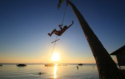 Silhouette of a boy hanging from a coconut tree swinging around at the beach with the sun behind his back Stock Images