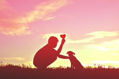 Silhouette boy playing with little dog stock image