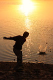 Silhouette of a boy throwing stones in a water, Khichan village, Royalty Free Stock Photos