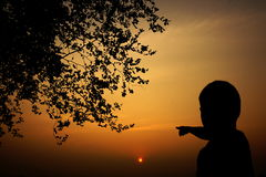 Silhouette of a boy watching at sunset Stock Image