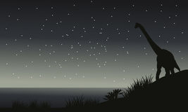 Silhouette of brachiosaurus at night Royalty Free Stock Photography