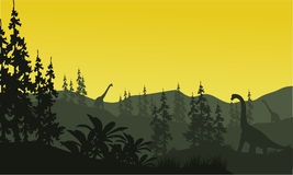 Silhouette of brachiosaurus and spruce Royalty Free Stock Photo