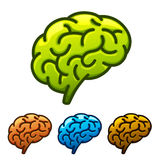 Silhouette of the brain green on a white background Stock Images