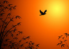 Silhouette of branches of a bamboo. Silhouette of branches of a bamboo and a flying bird Royalty Free Stock Photography