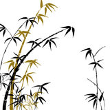 Silhouette of branches of a bamboo Stock Photos