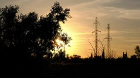 A silhouette of a branchy tree, standing against the sunset and antennas. A silhouette of a big branchy tree, standing against the sunset and antennas stock video footage