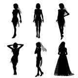 Silhouette of bride Royalty Free Stock Photo