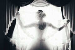 Silhouette of a bride is standing at the window and holding a veil. black and white portrait of a bride from the back. Stock Image