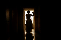 Silhouette of a bride Royalty Free Stock Images