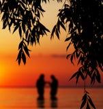 Silhouette brouillée de jeunes couples dans l'amour Photos libres de droits