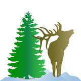 Silhouette of a brown deer northern, near a green Christmas. Silhouette of a brown deer northern, near a green Christmas tree, on the snow, on a white Stock Photography