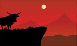 Silhouette of bull on the cliff Royalty Free Stock Photography