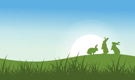 Silhouette of Bunny on the hill Stock Photos