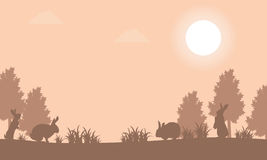 Silhouette of bunny at sunset landscape Royalty Free Stock Photography
