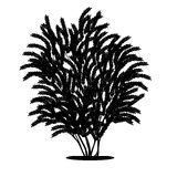 Silhouette bush with leaves and shadow Stock Images
