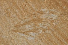 Silhouette of butterfly or bird wing made of sand and gravel by water flow at concrete. Surface Royalty Free Stock Photo