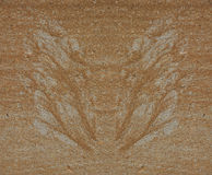 Silhouette of butterfly wings made of sand and gravel by water flow at concrete Royalty Free Stock Image