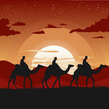 Silhouette of camel caravan traveling in desert at sunset Stock Images