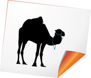 Silhouette of camel on a paper Royalty Free Stock Images