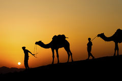 Silhouette of the Camel Trader across the sand dune. Stock Images