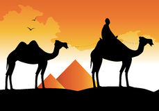 Silhouette of camels and pyramids Stock Photo