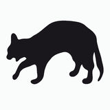 Silhouette of a cat Stock Image