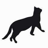 Silhouette of a cat Stock Images