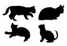 Silhouette of the cat. Black silhouette of a cat that stands, sits, lies and goes Stock Photo