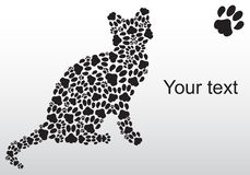 Silhouette of cat from the cat tracks Stock Photos