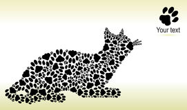 Silhouette of cat from the cat tracks Royalty Free Stock Image