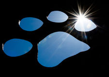 Silhouette of a cat paw with bright sunlight Stock Photography