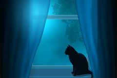 Silhouette of a cat sitting on a windowsill under the light of the moon in a window. Stock Image