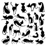 Silhouette of Cat Stock Photo