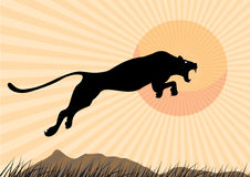 Silhouette Cheetah, Panther, design using black line square, graphic . Stock Photography